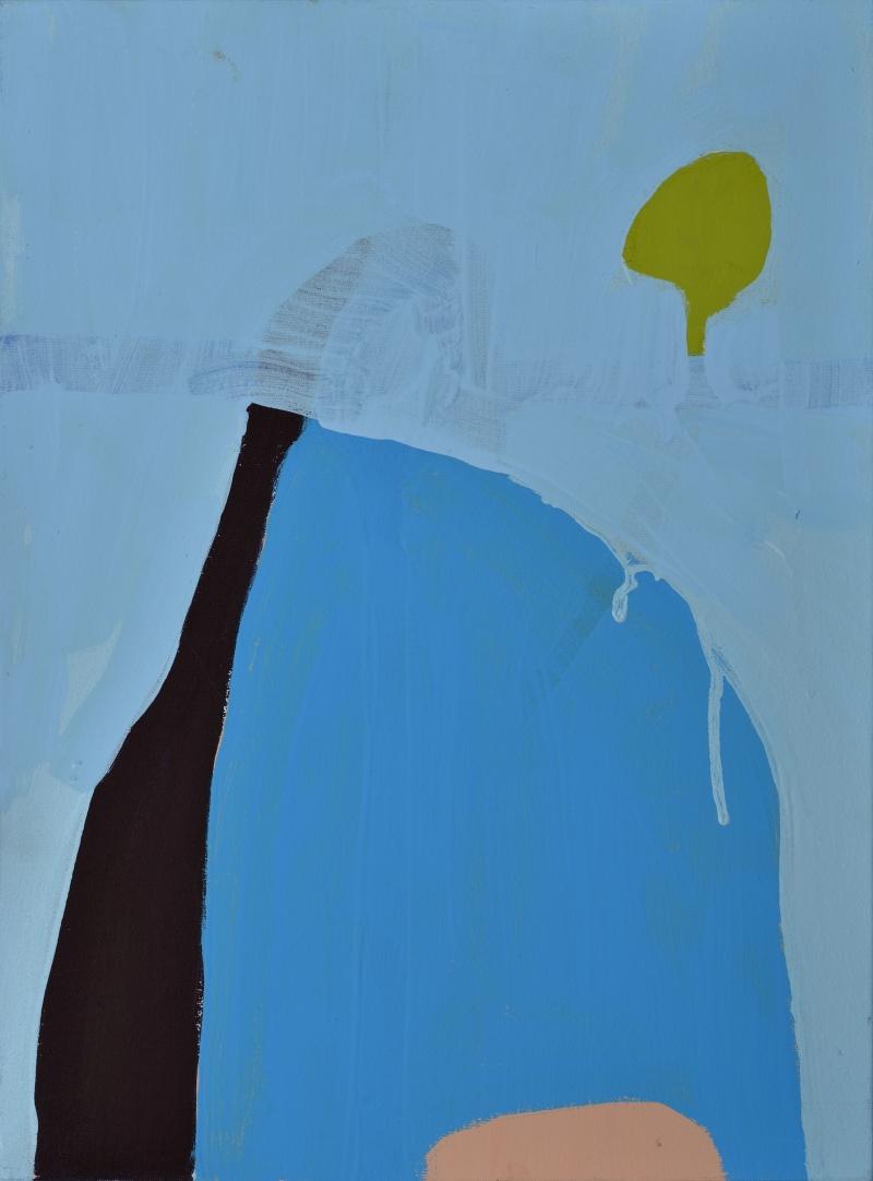 azul-no-negro-galeria-eduardo-fernandes-sao-paulo-brasil-out-nov-2015-542-800x800r.jpg