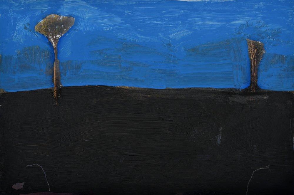 azul-no-negro-galeria-eduardo-fernandes-sao-paulo-brasil-out-nov-2015-545-800x800r.jpg