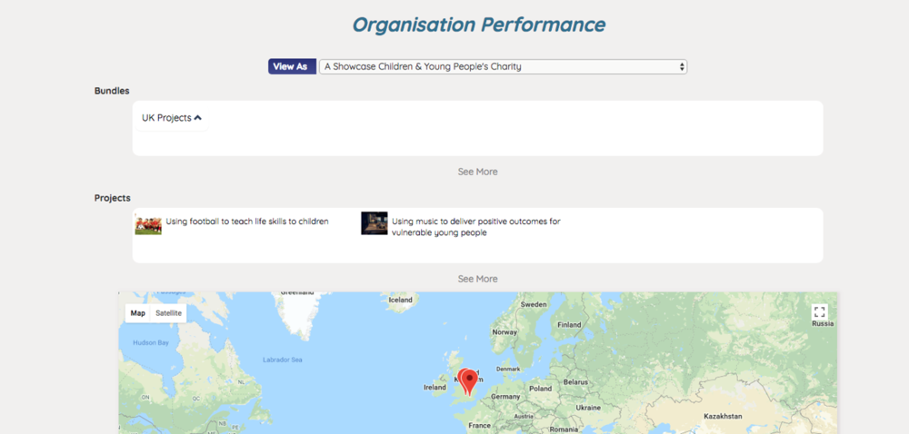 - 1. You can see your Organisation's Progress on the Impact Tracker page. At the top of the page you can see the projects created by your Organisation, followed by a map that shows the Organisation's impact across the world