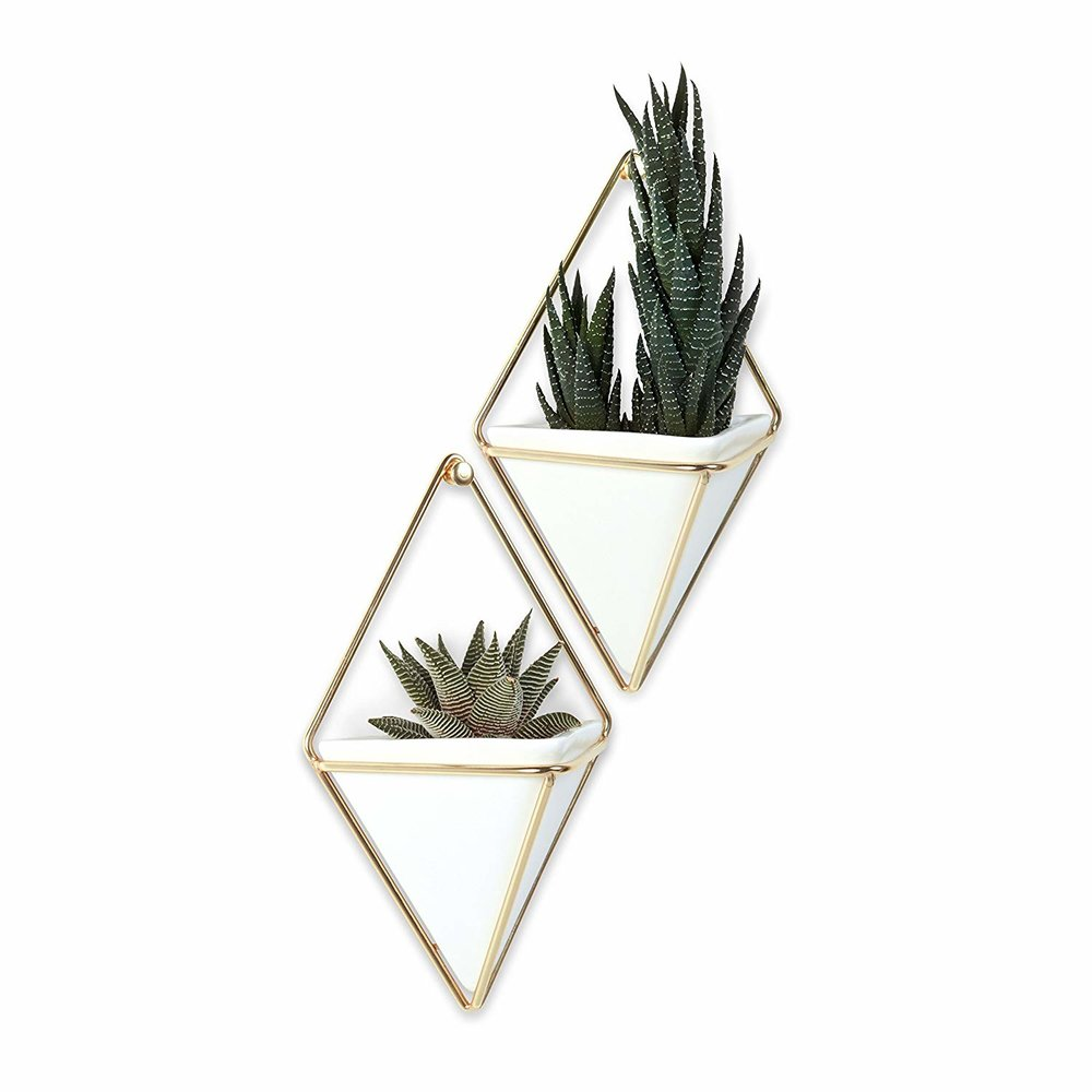 Umbra 470753-524 Trigg Hanging Planter Vase, Small, Brass.jpg
