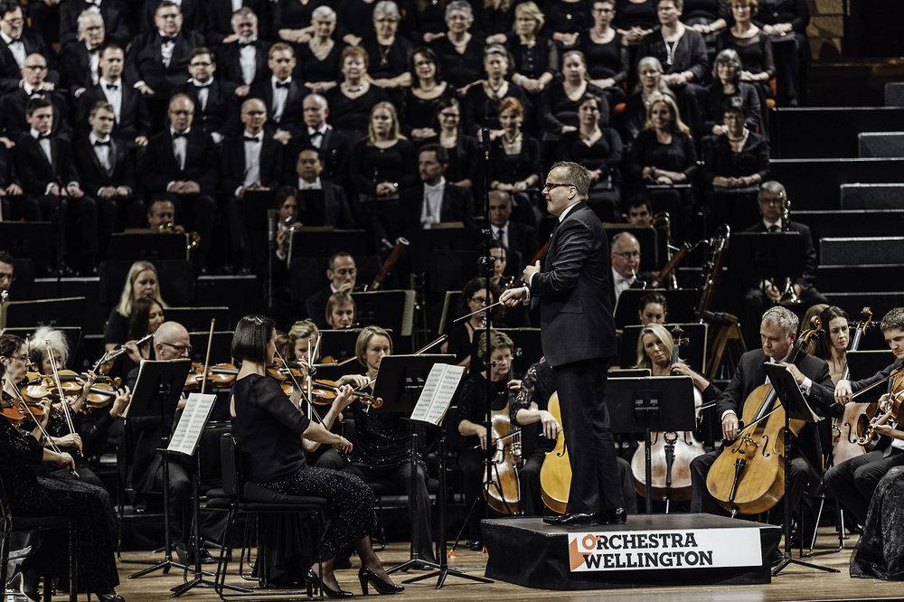 Orchestra Wellington main body.jpg
