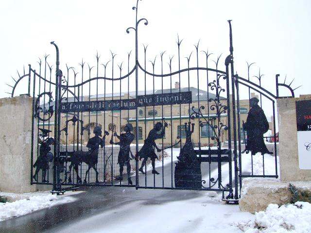 Doyle Driveway Gates.jpg