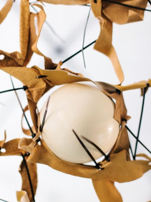 THE NET 2016  Técnica mixta: Estructura de metal, cinchos de nylon, cuero de avestruz y cascarones de huevo.  350 x 400 x 300cm