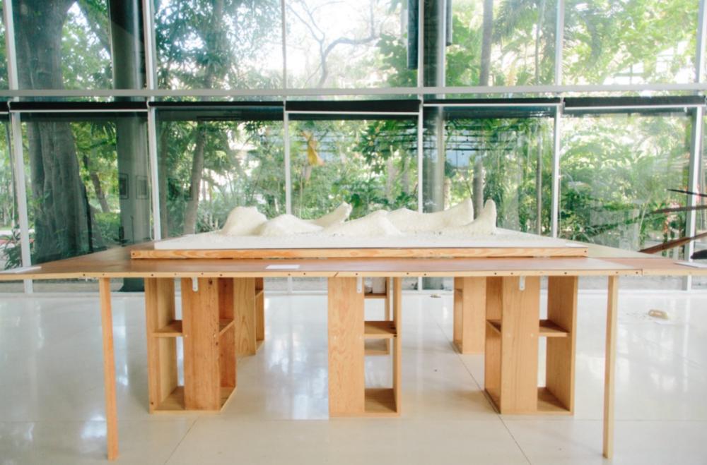 IZTACTLACATL  2017  Técnica mixta: Cascarón sobre madera, figuras a escala, alambre y papel.  325 x 204 x124cm