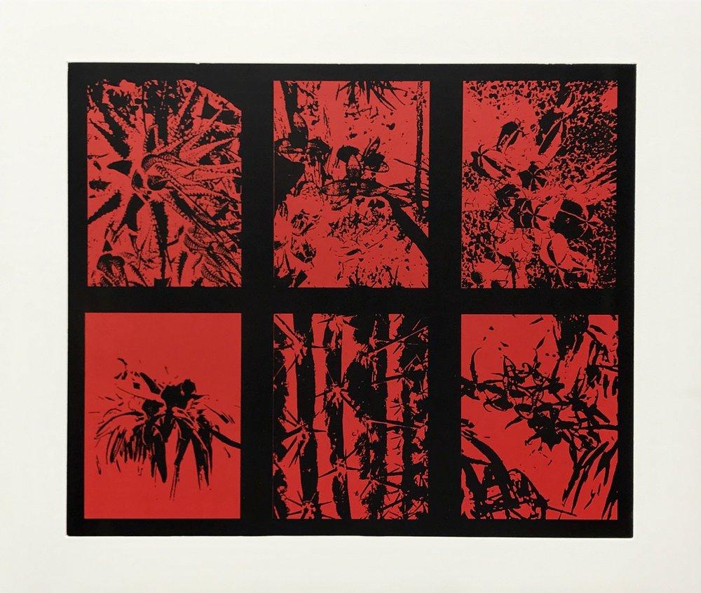 Survival Legacies , 2017  Series of 10  Two-color gravure  69.5 x 83.7 cm