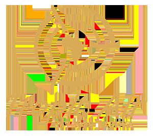 Tropic Air Kenya.png