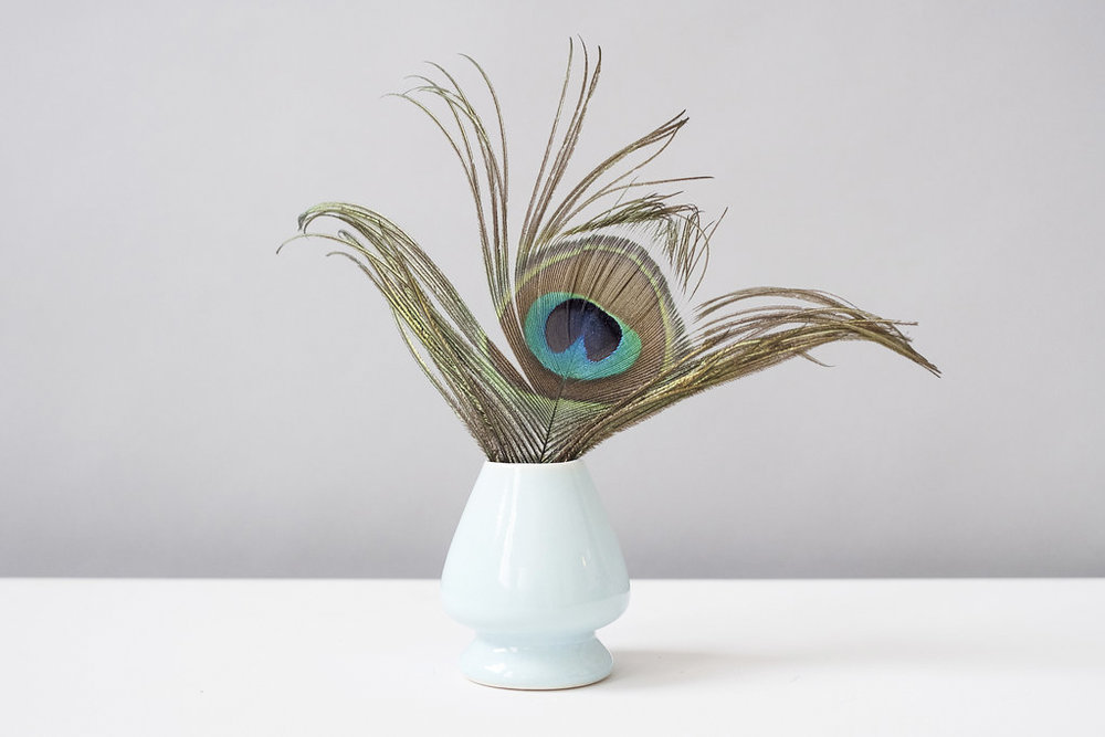 Feathers in a vase - Reclaiming Beauty