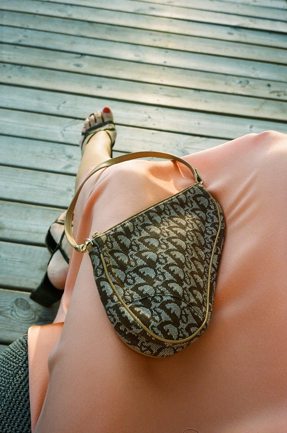 details of dior bag.JPG
