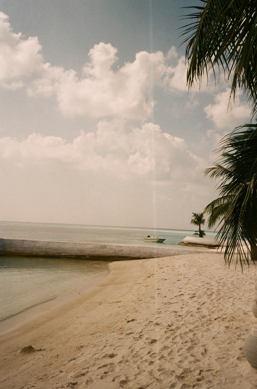 beach by the pool.jpg
