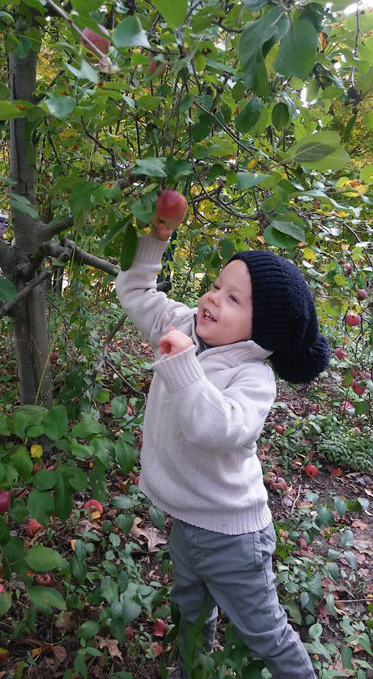 Welsey apple picking.jpg