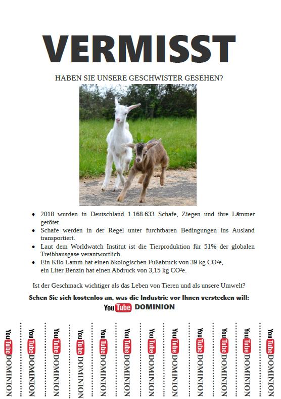Vermisstenanzeige Lämmer, Ziegen, Schafe - Missing Lambs, Goats, Sheep