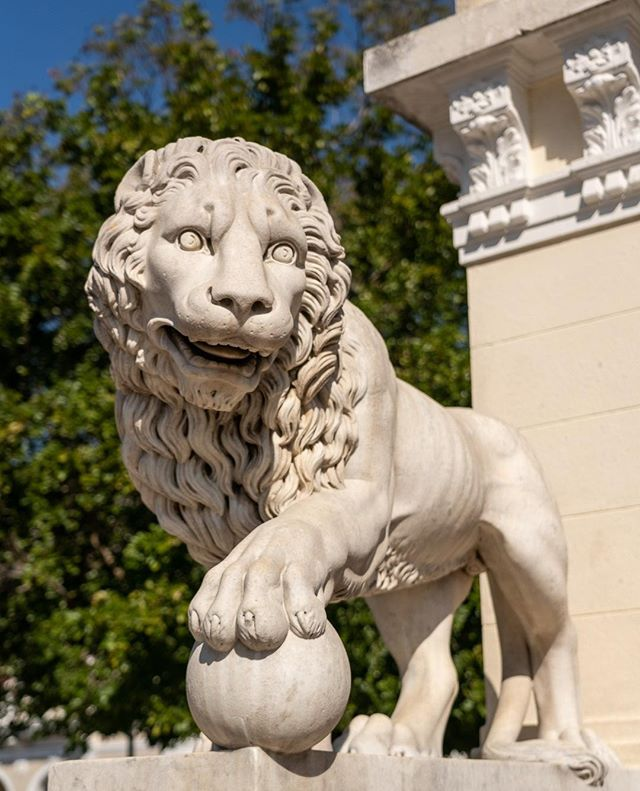 Lions guard the entrance to Plaza Jose Marti in Cienfuegos  www.cubaphototravel.com Engage l Explore l Capture Follow: @cubaphototravel / Tag: #cubaphototravel  #Cuba #loves_cuba #cienfuegos #photographyislife #getlost #keepexploring #theglobewanderer #exploretheworld #neverstopexploring #travelstagram #letsgosomewhere #roamtheplanet #welltravelled #justbackfrom #chasinglight #openmyworld #bestvacations #travelstoke #travelphotographer #traveldeeper #welltravelled #stayandwander