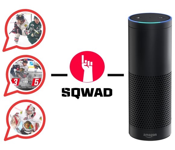Alexa Website Image integratte@1x.png