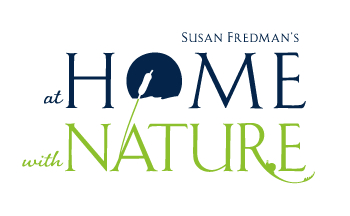 Home&Nature-Logo-01.png