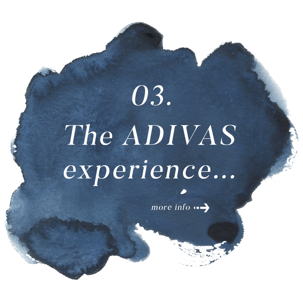 adivas-q3.png