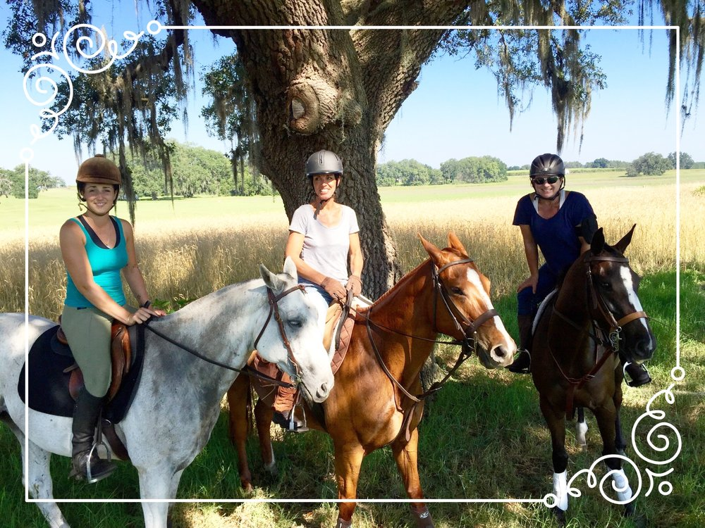 - Riding with Jaymie is always a great adventure! Her sweet horses make the surroundings even more amazing- whether through woods, orchards, streams, you cannot be disappointed!~Fie Hait
