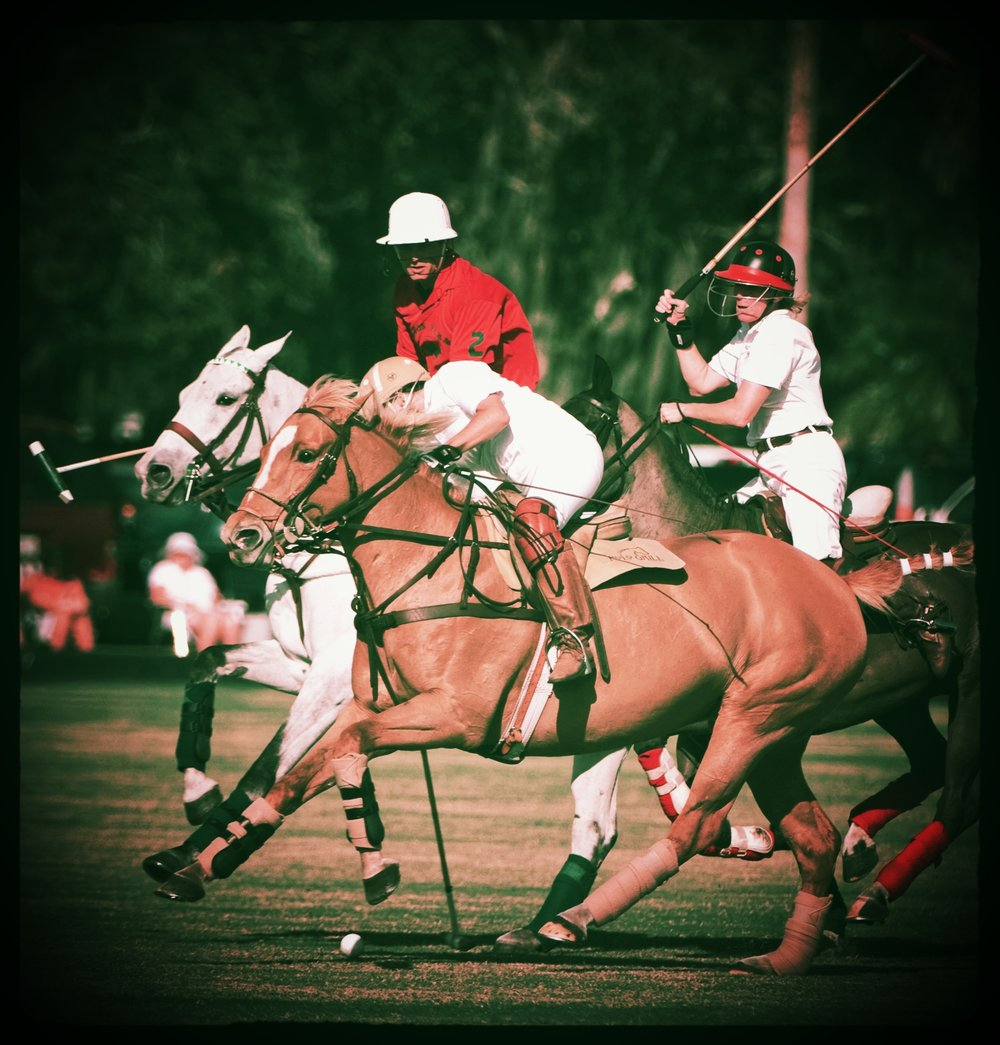 E  pic P  OLO LEAGUE   Easy-Going, Super-Fun, Affordable Polo