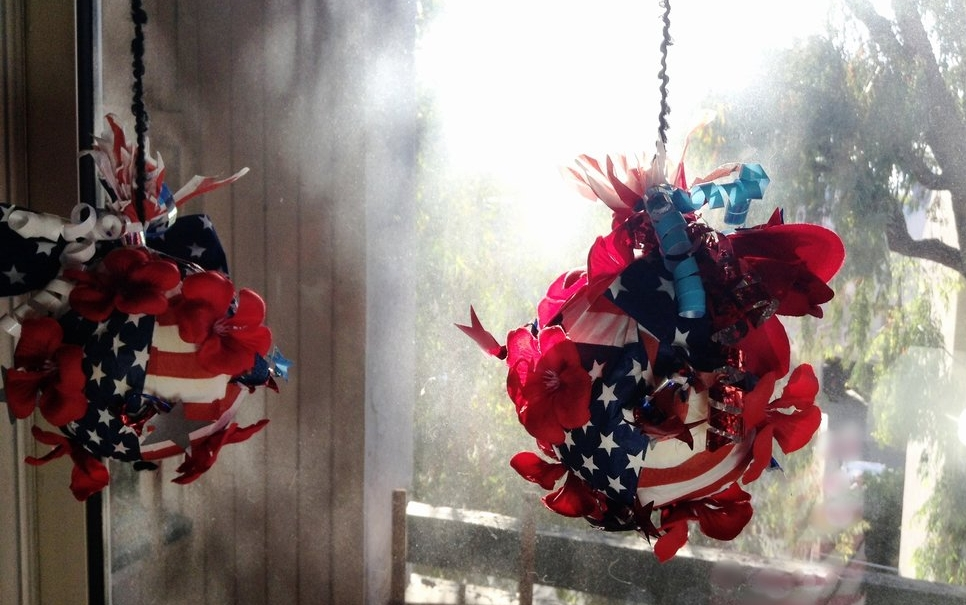 Stars & Stripes Flower Bombs