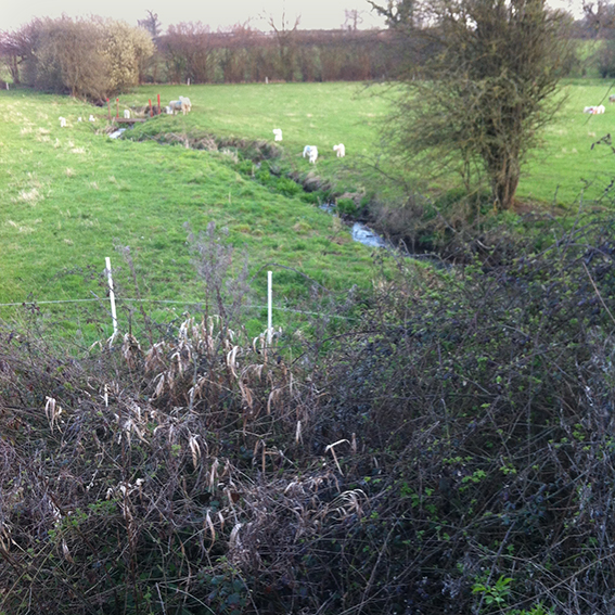 Looking south of the A4. The Biddestone stream meanders towards the Pudding brook.