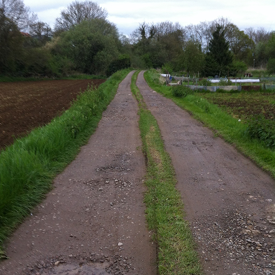 The track near Patterdown. The bridge over the Pudding Brook behind the the trees on the left.