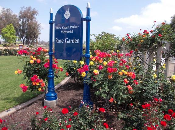 Balboa Park: Rose Garden