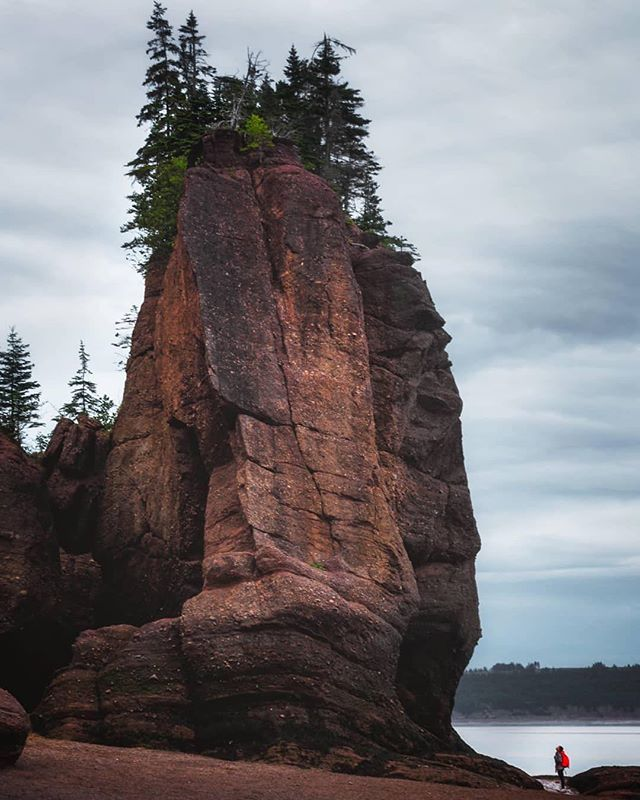 The Story: Take a walk on the ocean floor near some flower pot rocks why don't ya? They'll be just about underwater in a few hours because of those wicked tides that rise and fall 50+ feet every six hours or so! (📸 @outherecanada)