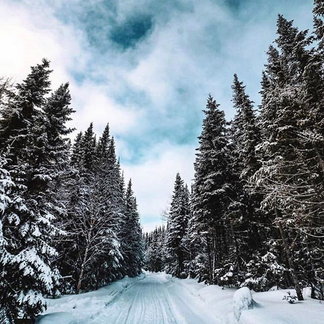 The Story: Did you know that Quebec sees its highest snow fall each year in February, with an average of 31 inches of the white stuff covering the province!?! ❄️ (📸: @imleewis via @quebecoisenvoyage )