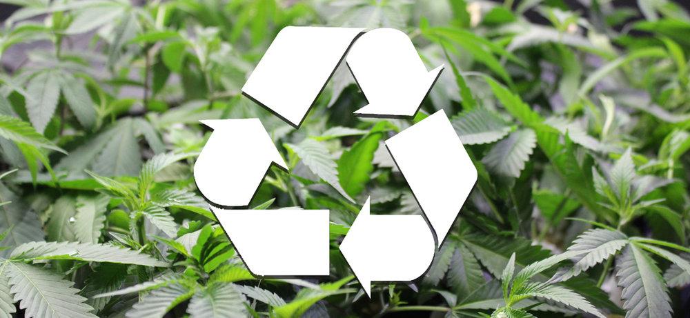 cannabis-recycle-web.jpg