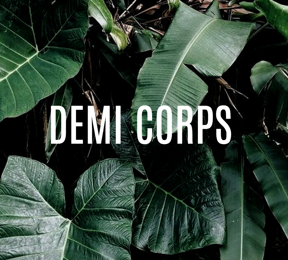 demi corps.png