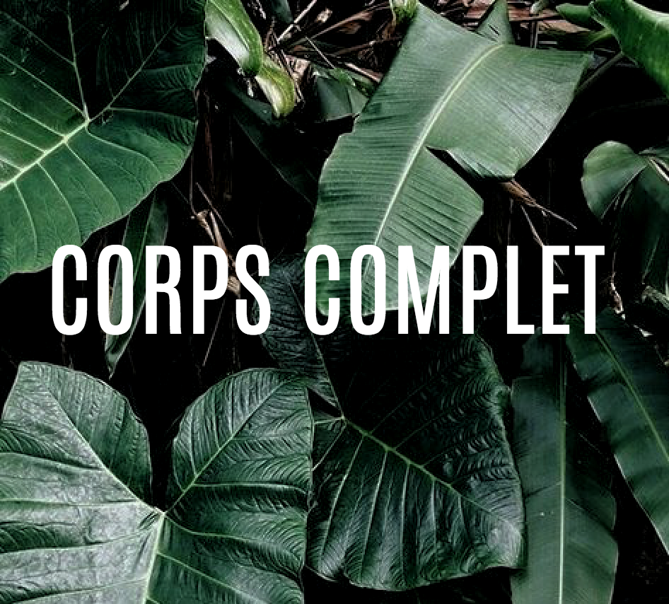 corps complet.png