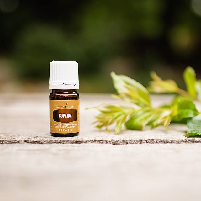 copaiba essential oil young living debra mitchell