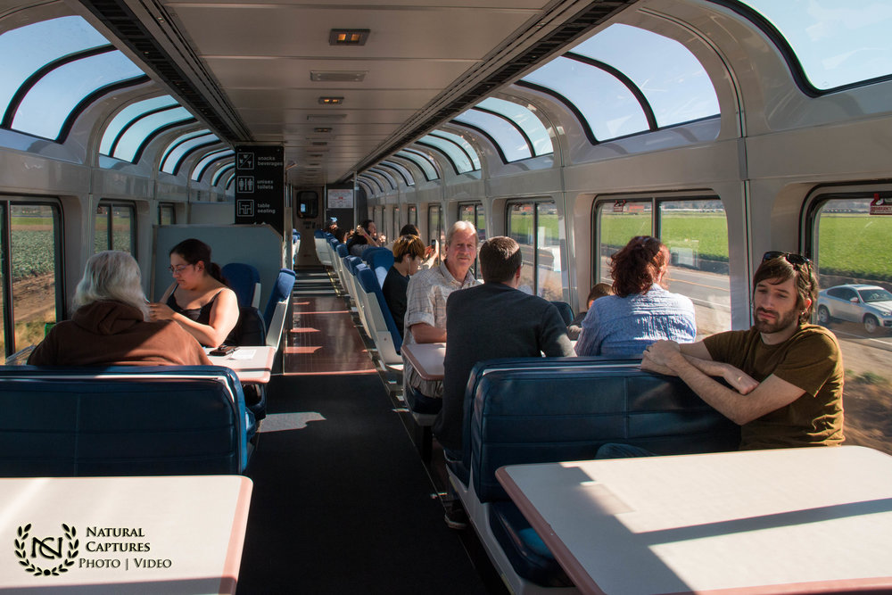 Train Vacation (3)