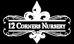12 corners logo(w).png