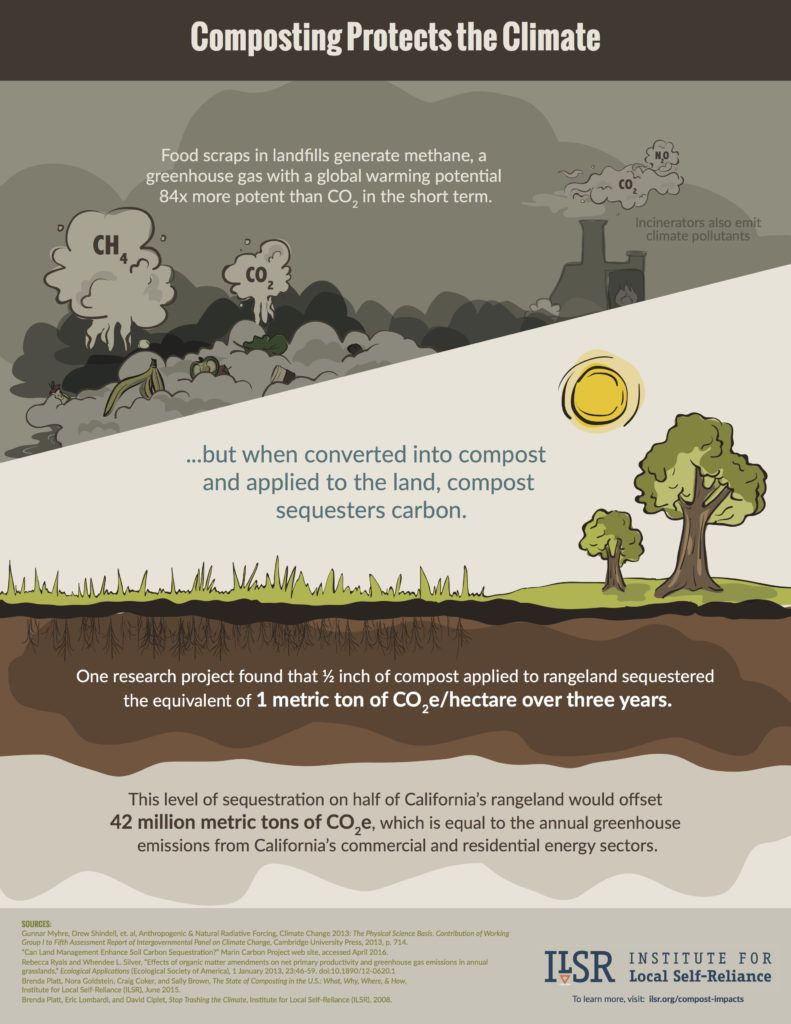 Compost-Infographic-18x23-Pg3-791x1024.jpg