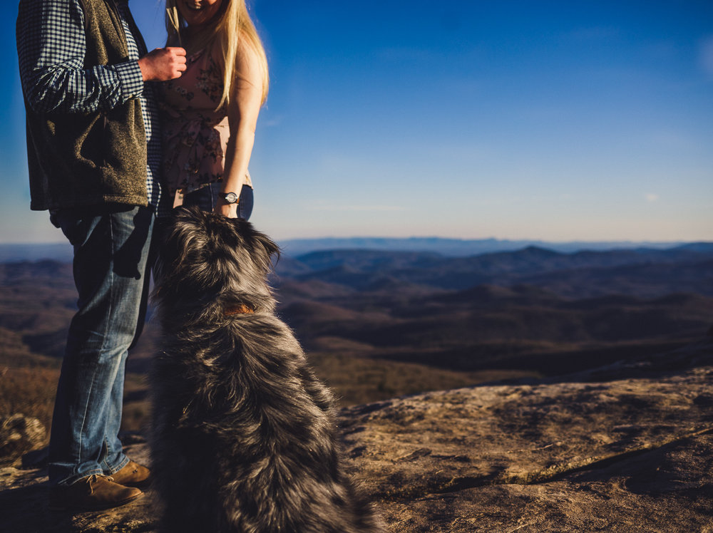 dog engagement photos, rough ridge overlook, charlotte engagement session, charlotte wedding photographer, rough ridge engagement session, north carolina wedding photographer