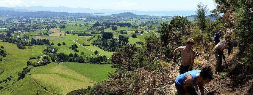 Takaka, New Zealand.