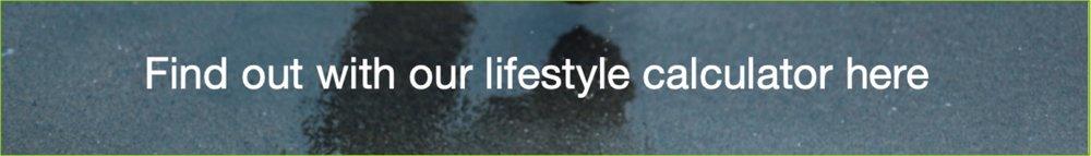 Lifestyle calc.jpg
