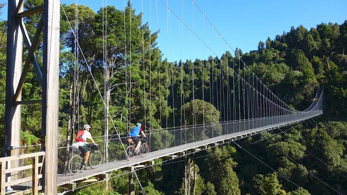 Timber trail bridge_small.png