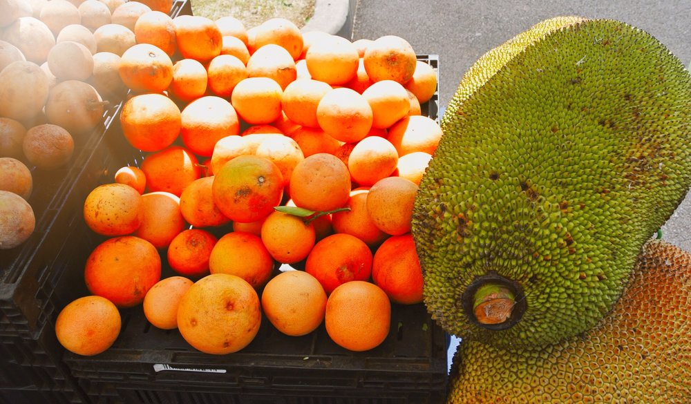 Holistically Inspired Blog | My Two Weeks on Maui