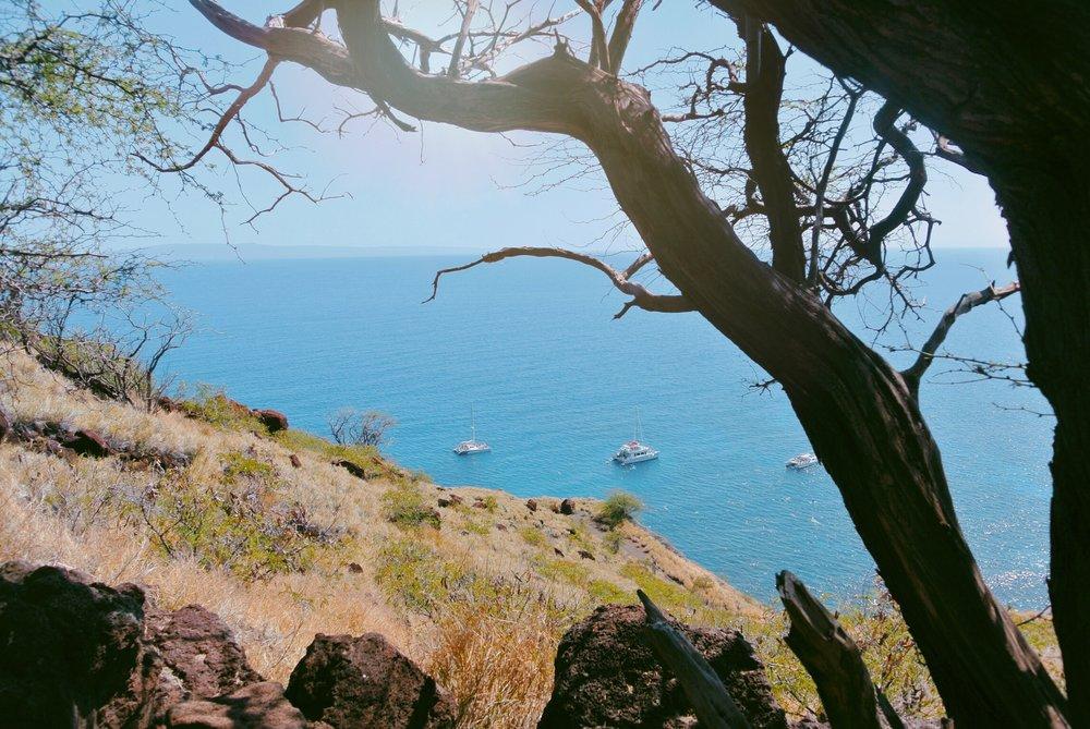 My Two Weeks on Maui | Holistically Inspired Blog