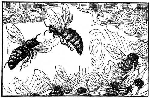 bee-clipart-3.jpg