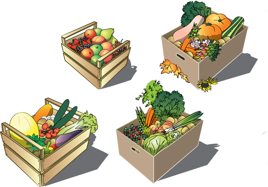 boxes7 (1).png