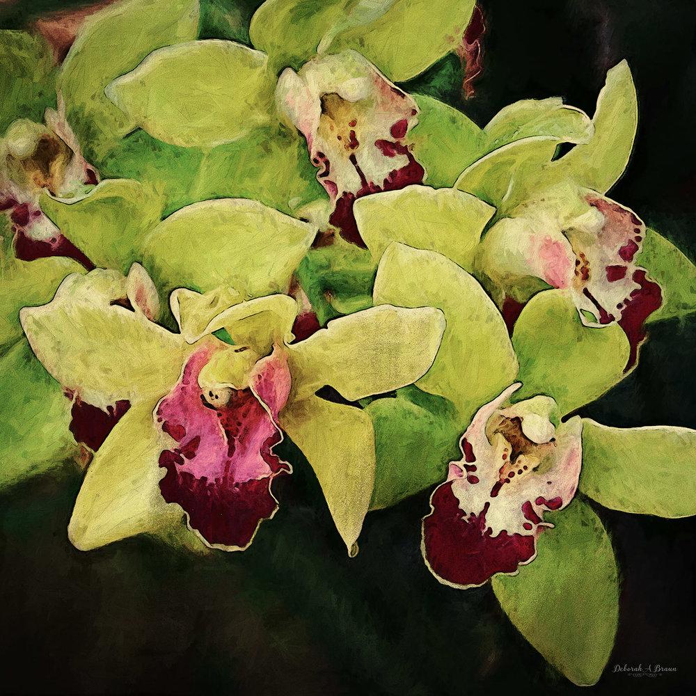Green Orchids.jpg