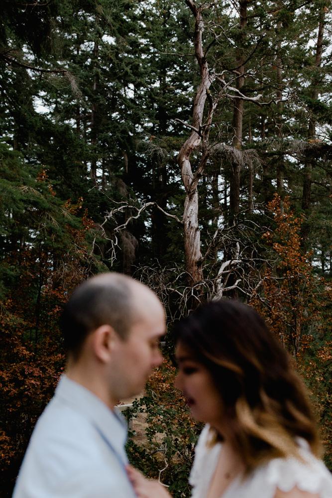 bride groom engagement