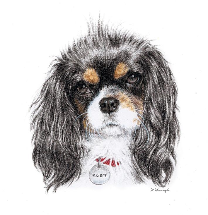 Ruby-Pet-Portrait.jpg