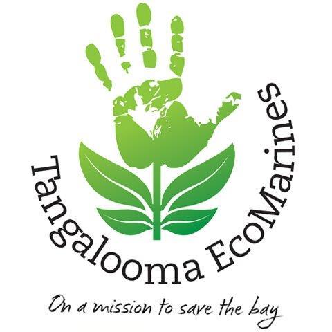 Tangalooma Ecomarines..jpg