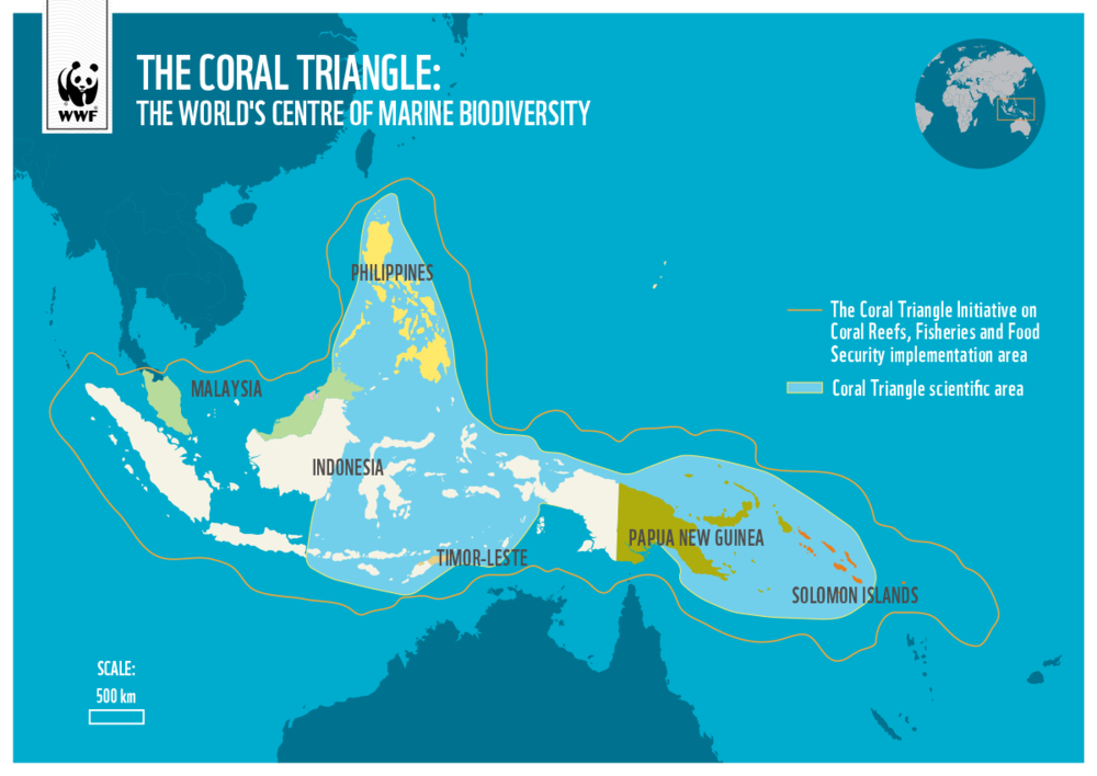 World Wildlife Fund For Nature: Coral Triangle http://wwf.panda.org/knowledge_hub/where_we_work/coraltriangle/