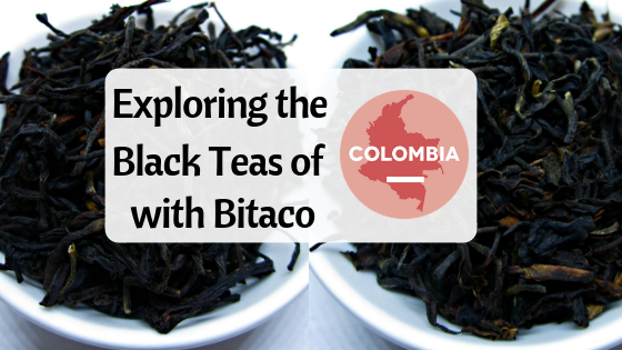 Exploring the Black Teas of Bitaco.png