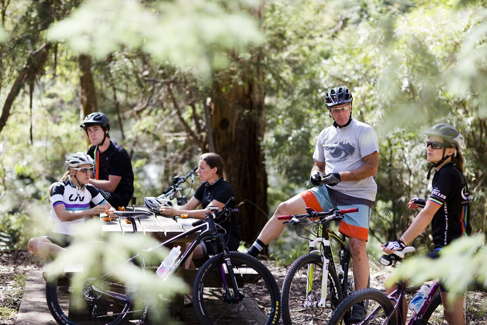 MTB-Riders-at-Warburton.jpg