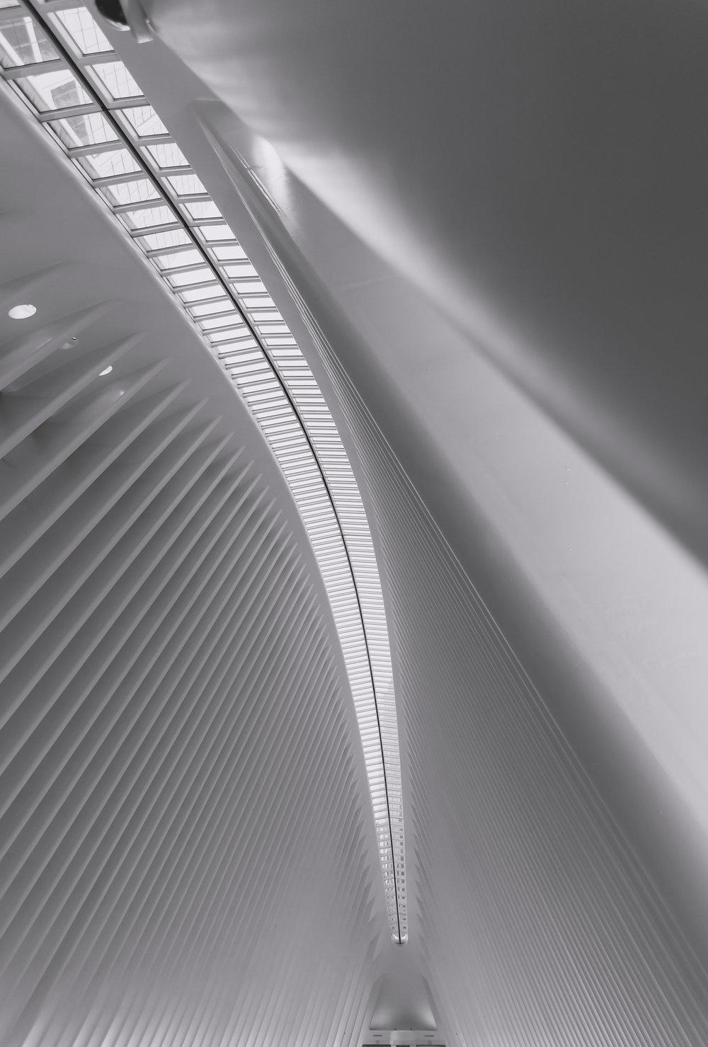 oculus spine.jpg